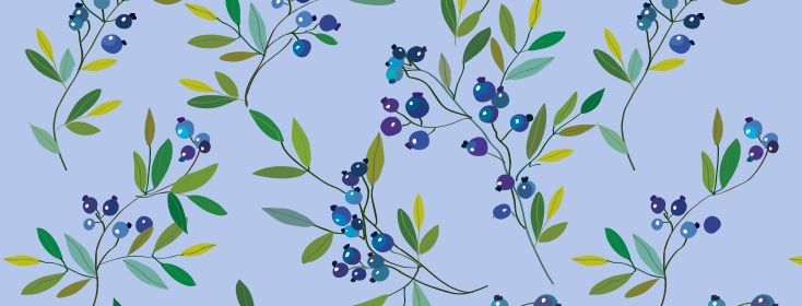 Blueberries (??!!)