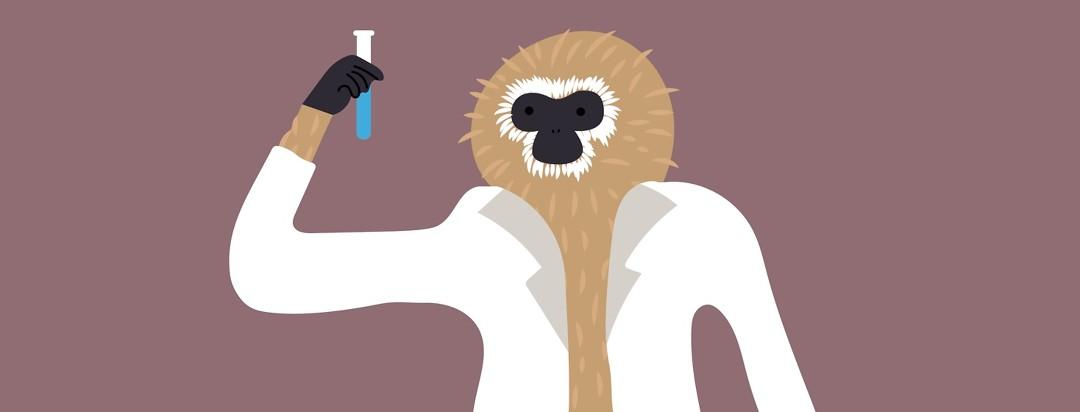 Monkey See, Monkey Do, Monkey Cure RA?