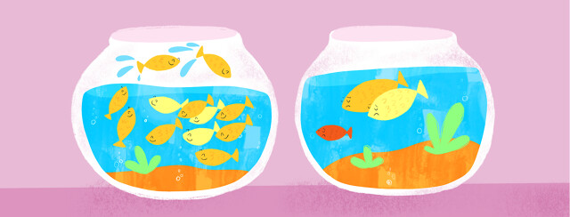 Two fish bowls sit side by side, one has very lively and playful juvenile fish happily swimming, the other has an isolated juvenile fish with his sad parents, looking longingly at the other bowl.